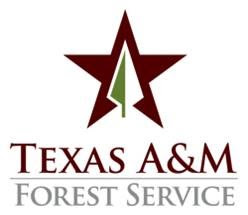 Texas A&M Forest Service Forest Therapy @ Texas A&M Forest Service | Conroe | Texas | United States