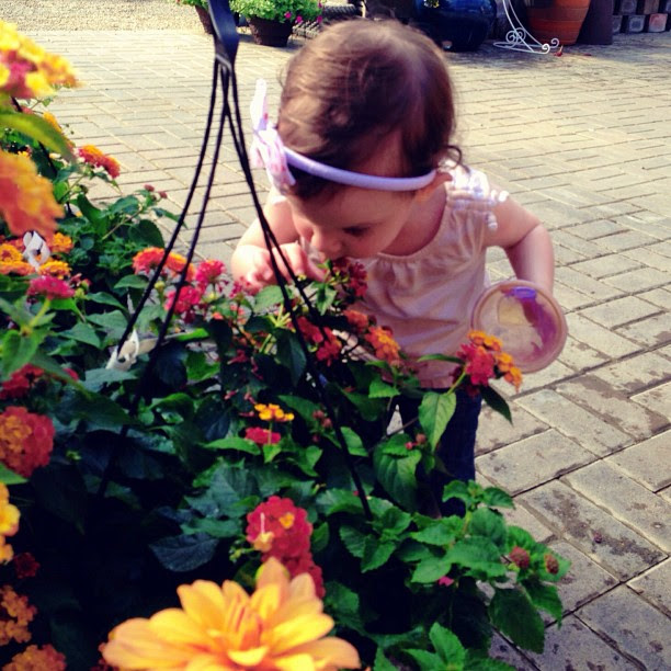 Quinn Smelling Flowers