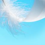 señales de los angeles