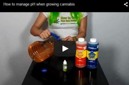 Watch a youtube video of Nebula demonstrating how to PH your water