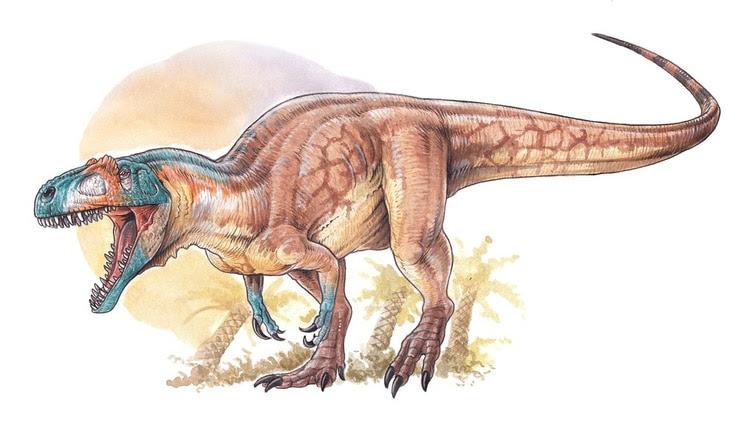 Vivió unos 12 millones de años antes que el T-Rex y es el Tiranosaurio más antiguo descubierto en Canadá
