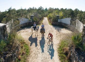 Cross Florida Greenway land bridge by John Moran