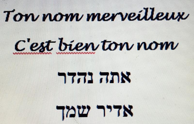 Ata Nehedar in French