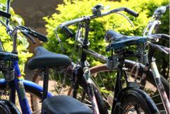 Bicycles glisten in the sun in Uganda
