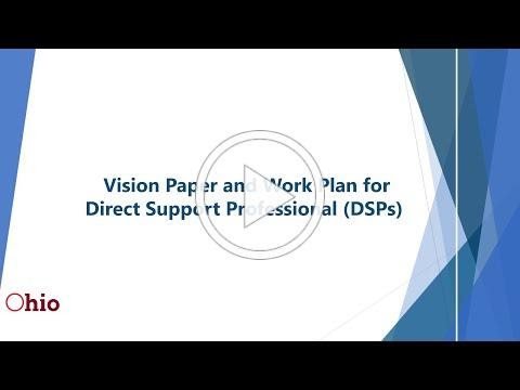 DSP Vision and Work Plan
