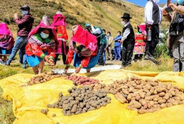 Cierre de mercado boliviano afecta a productores agropecuarios peruanos