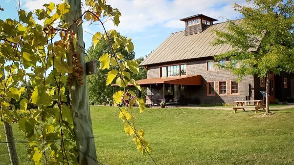Shelburne Vineyards on a sunny day in Vermont