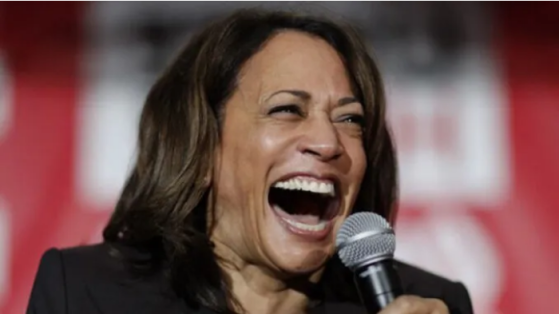 Rumors Swirl About President Harris' Mental State After She Bursts Into ANOTHER Uncontrolled Laughing Fit Image-1120