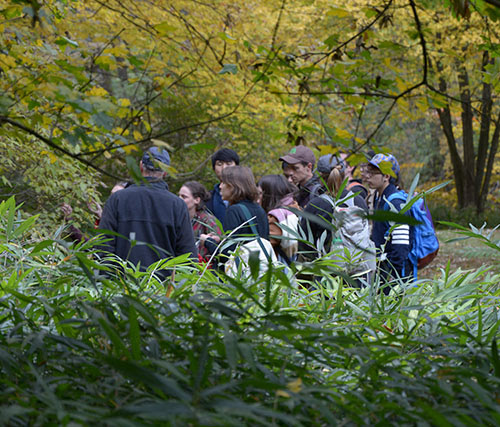 A group taking a behind the scenes tour at Morris Arboretum.