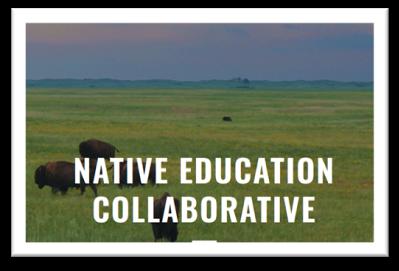 Native Education Collaborative