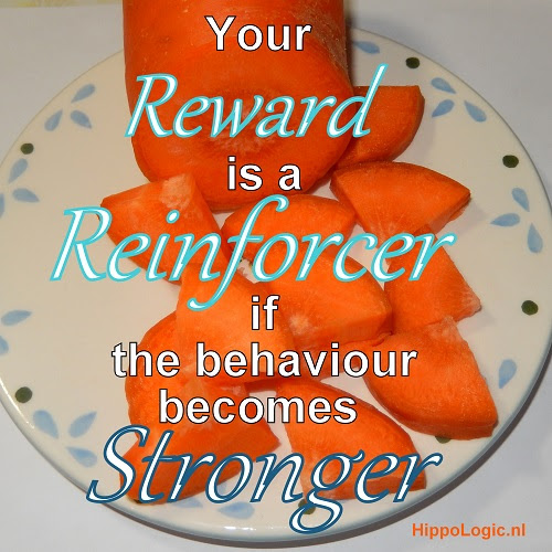 _Reward_reinforcer_hippologic