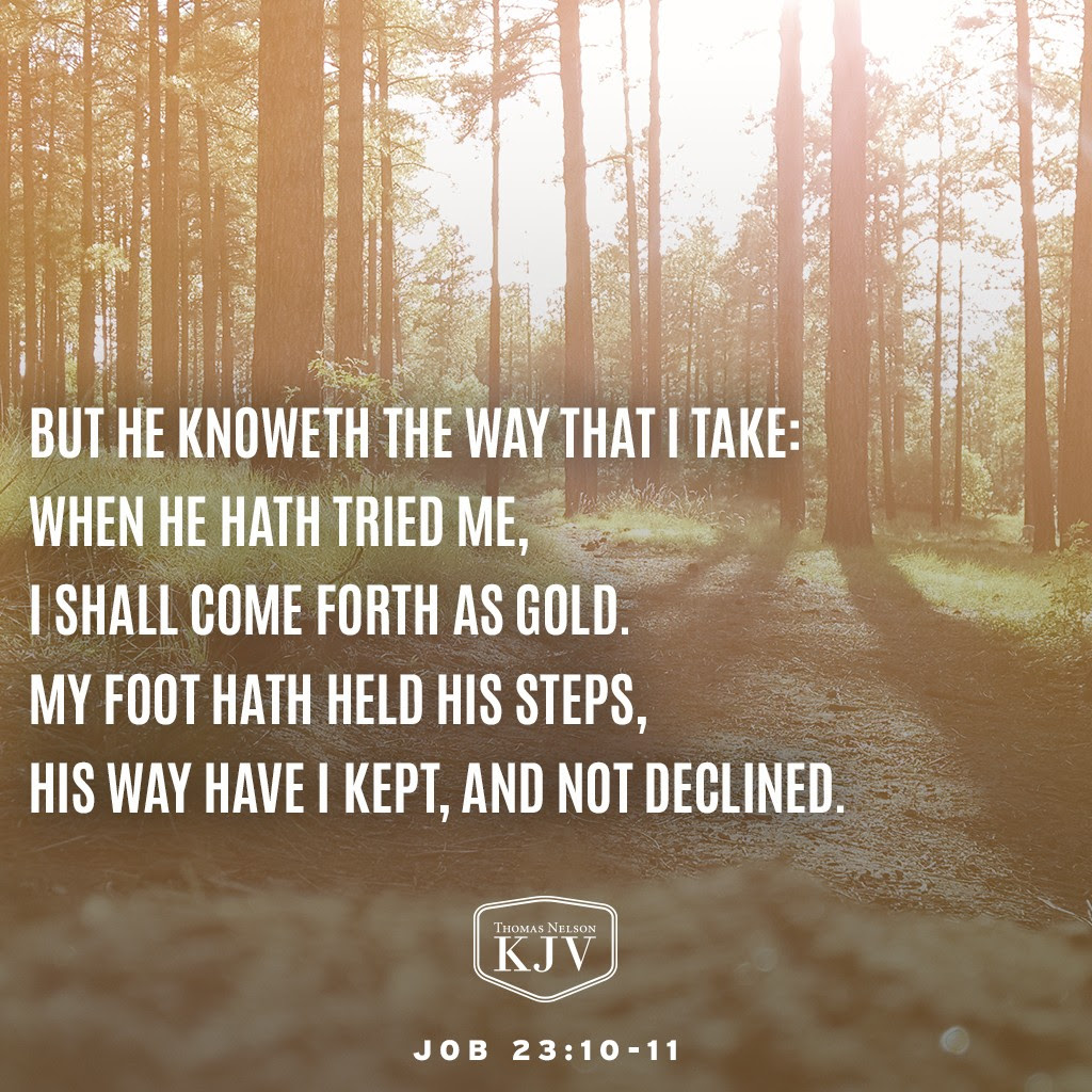 10 But he knoweth the way that I take: when he hath tried me, I shall come forth as gold.  11 My foot hath held his steps, his way have I kept, and not declined. Job 23:10-11