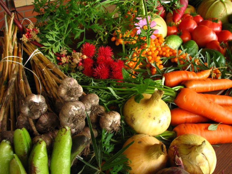vegetables, produce, carrots, onions, garlic