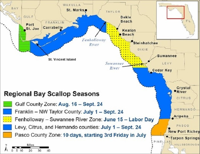 scallop seasons with map for 2021