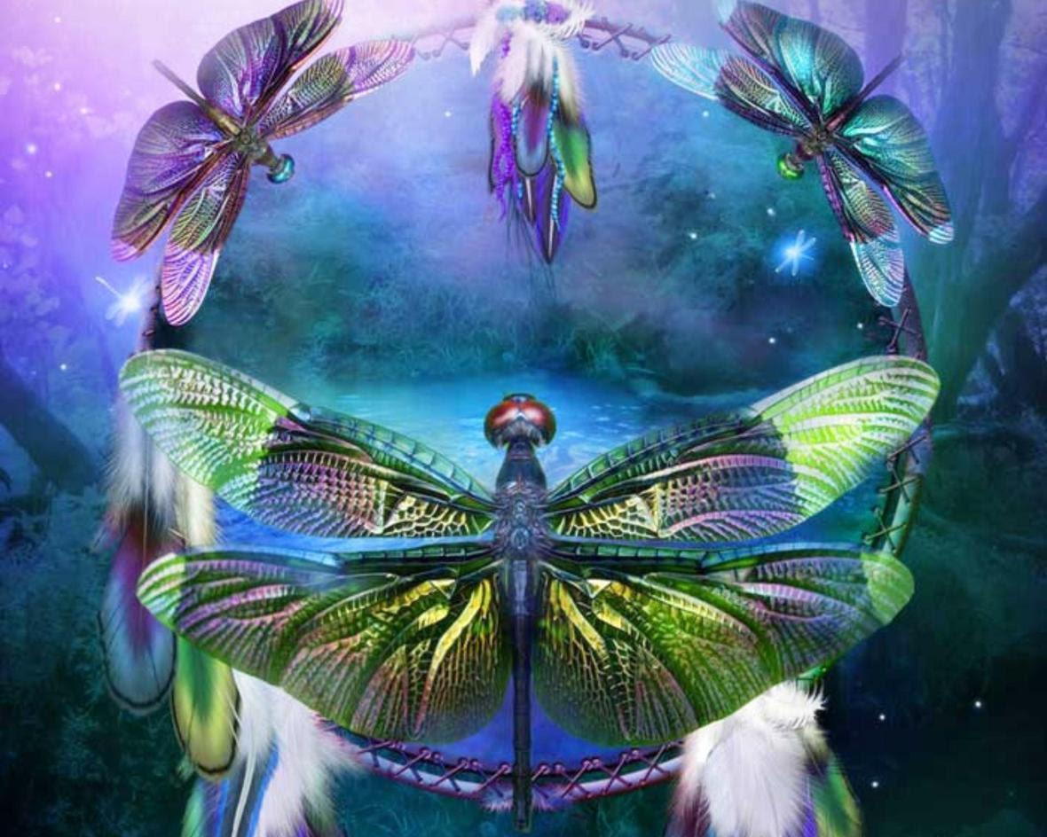 dragonfies of spiritual-1486082