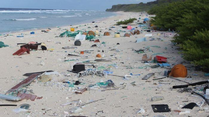 île d'Henderson déchets