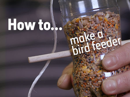 A video showing how to build a bird feeder