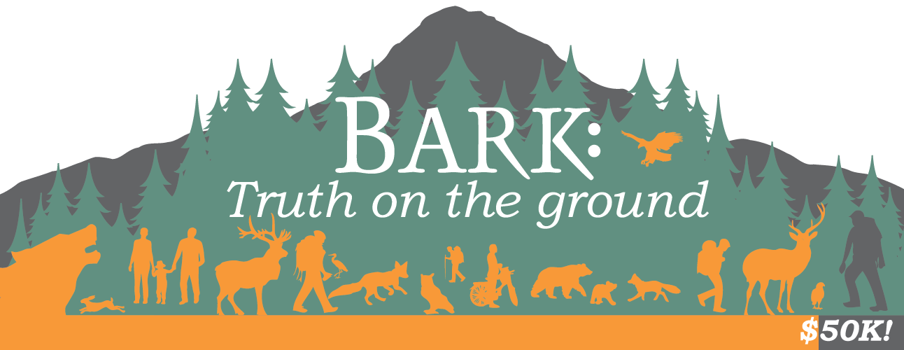 Bark Winter Campaign Thermometer
