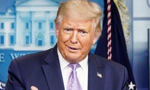 El presidente de Estados Unidos, Donald Trump / REUTERS / Kevin Lamarque