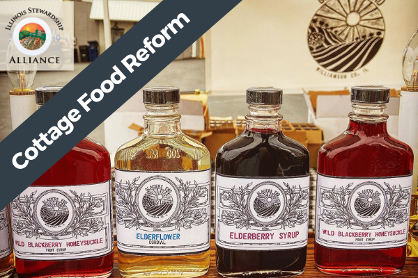 Cottage Food Reform is a Primary Issue - Photo of cottage food produced syrups from Glacier's End Farm outside of Carbondale in Southern Illinois.