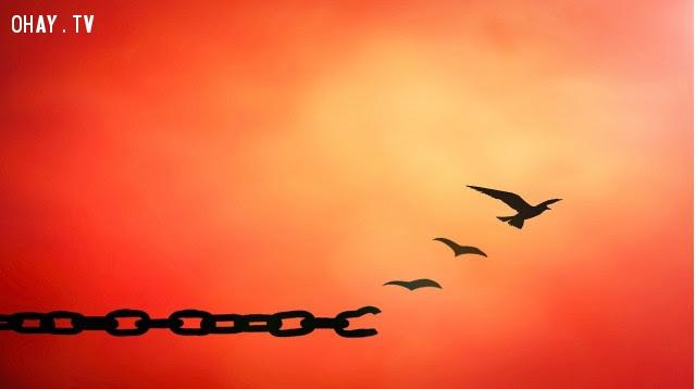 2. Bạn không thể kiểm soát mọi thứ ,cách sống tốt,tha thứ