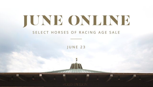 June Online Select Horses of Racing Age Sale. June 23.