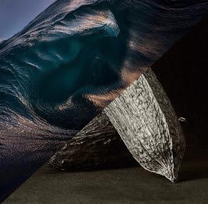 Wild Ocean Wonderings
