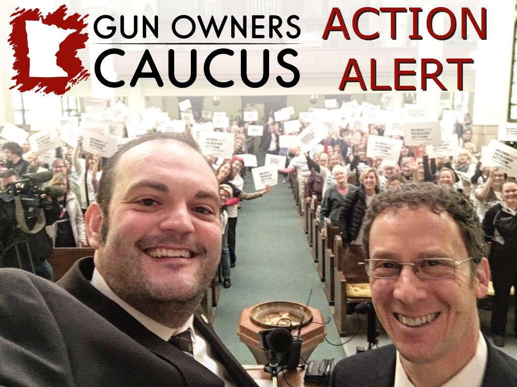 Schoen_UBC_Amendment_-_Action_Alert.jpg