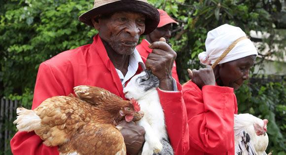 Kenia. Foto: NOOR KHAMIS/REUTERS.