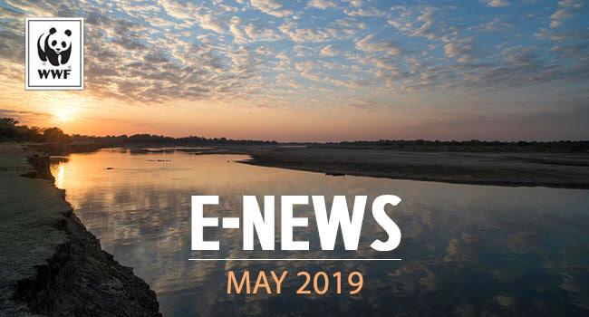 Luangwa River in Zambia | May e-newsletter