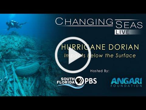 Hurricane Dorian: Impacts Below the Surface | Changing Seas