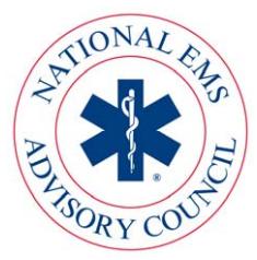 NEMSAC logo