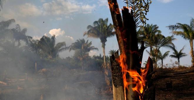 Un tramo de la Amazonia quemado por leñadores y granjeros para limpiar el terreno en Iranduba. / Reuters