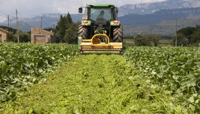 agricultores-1549650582352.jpg