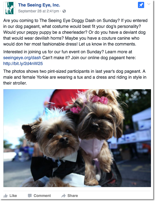 Image of the Facebook post with details on how to enter the Doggy Dash Online Pageant