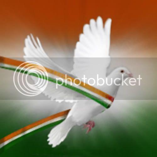 indian flag photo: Indian Flag_Bird 3Coulors_Bird.jpg