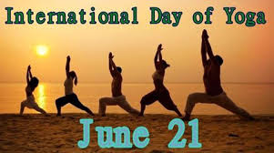 Image result for international yoga day