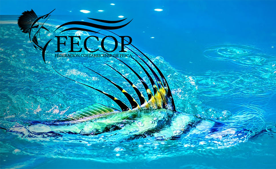 Roosterfish Tournament in Costa Rica Nov. 16-19 | Fishing Wire