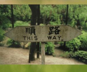 De weg naar nieuwe levenslust