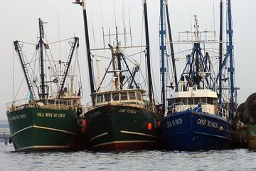 NE boats