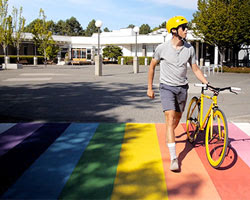 Photo of rainbow crosswalk on campus.