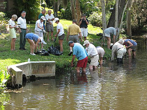 sarasota bay estuary volunteers