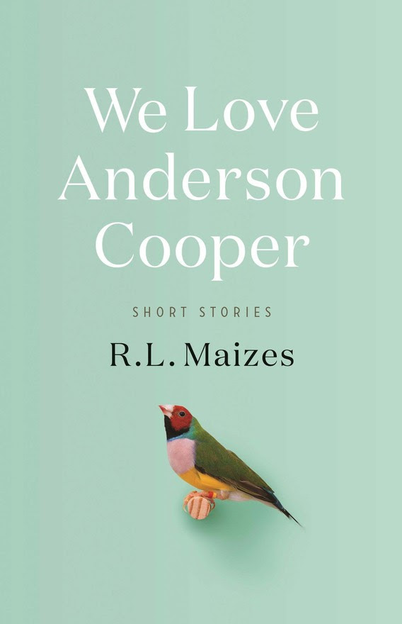 We Love Anderson Cooper by R.L. Maizes