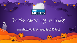 NCEES Tips and Tricks