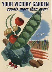 Victory Gardens Article