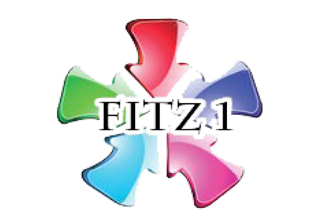 Fitz One International Co.,Ltd.