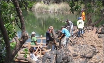 Habitat Focus Area funding v2