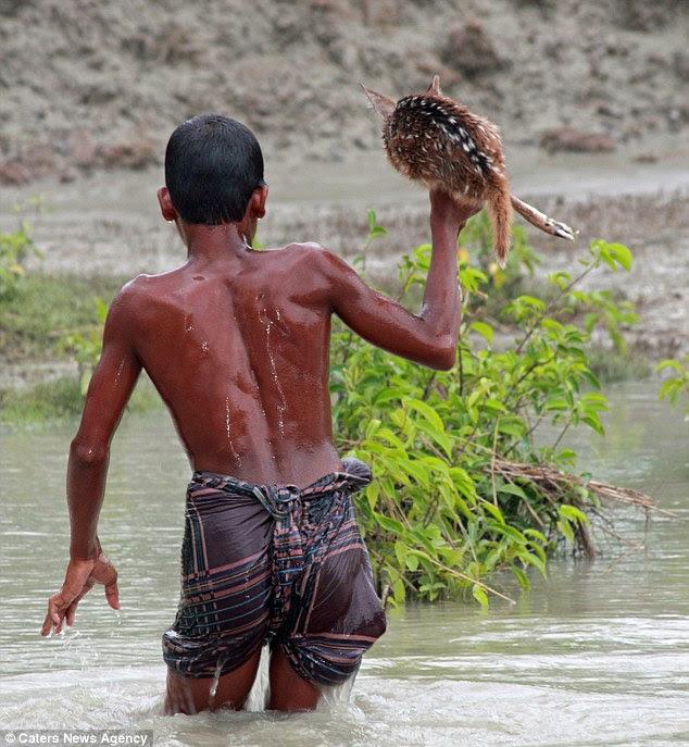 diaforetiko.gr : article 2552923 1B3BDCDD00000578 911 634x687 Αυτό το αγοράκι από το Μπαγκλαντές διακινδύνεψε τη ζωή του για να σώσει ένα ελαφάκι!!!