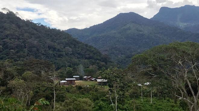 Comunidad de Tsumtsuim en el territorio Shuar, al sur del Ecuador