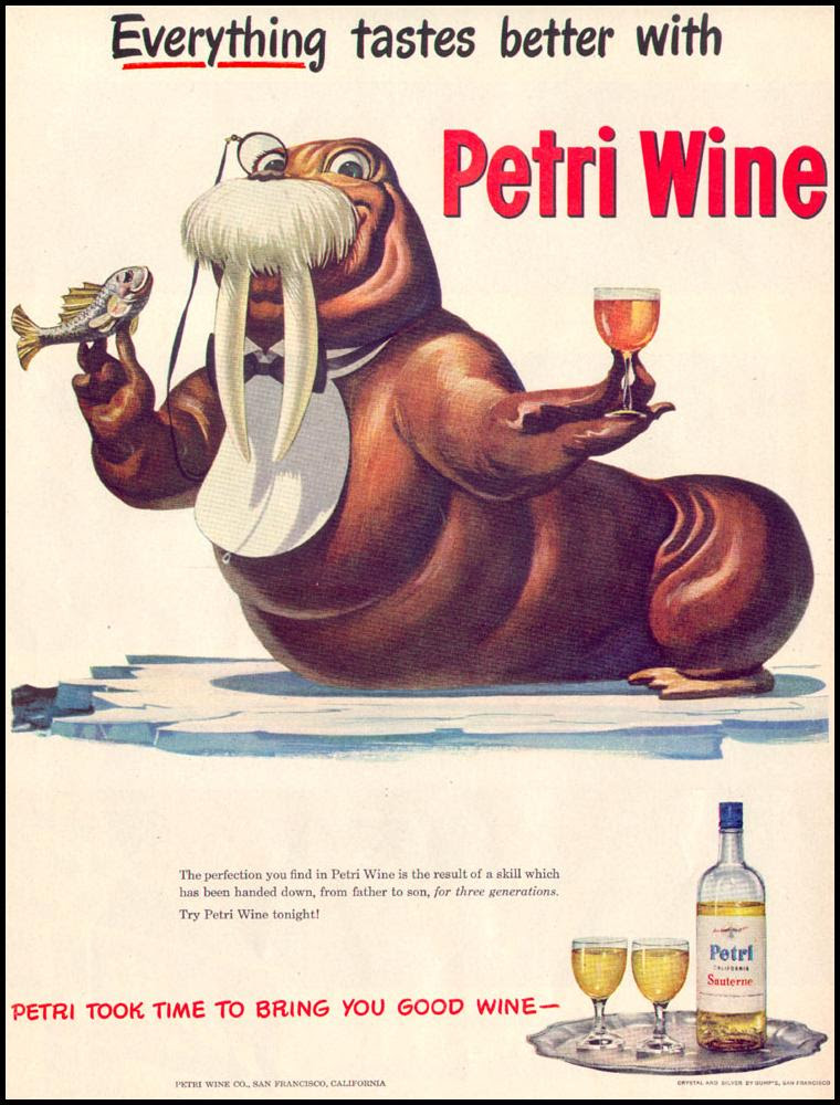 PETRI WINE LIFE 12/27/1948 p. 80